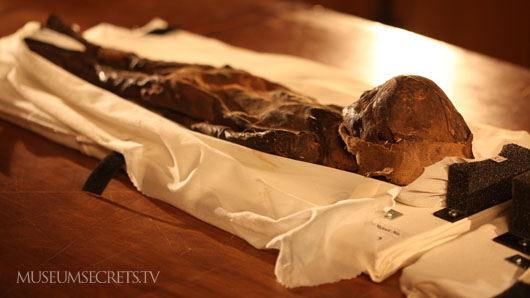 Museum Secrets : Baby Mummy